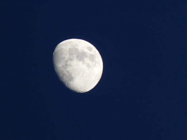 Moon Photo by Patricia L Atchison